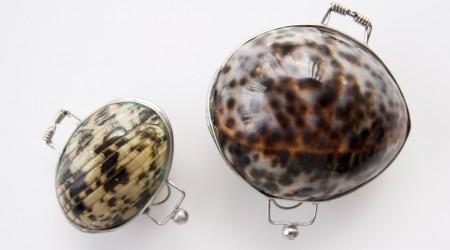 review organic shell lippenbalsem
