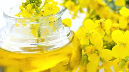 Extra-Virgin-rapeseed-Oils