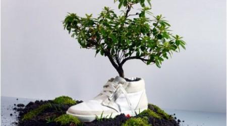 duurzame eco schoenen sneakers
