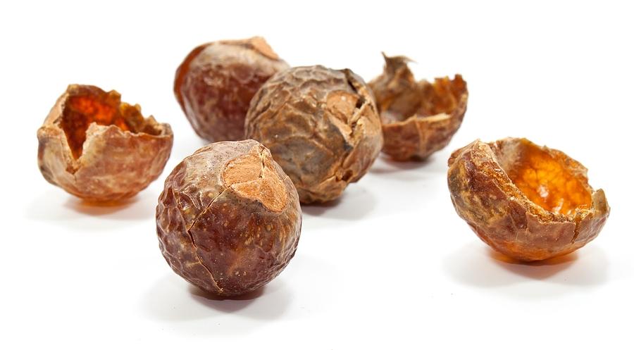 Soap nuts wasnoten