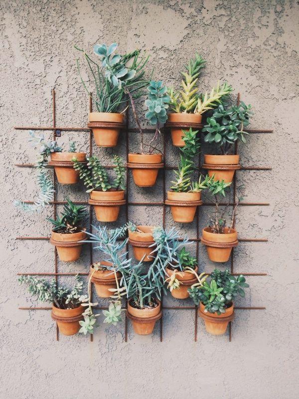 Mijn moestuin in potten zolea - Groenten in potten op balkons ...