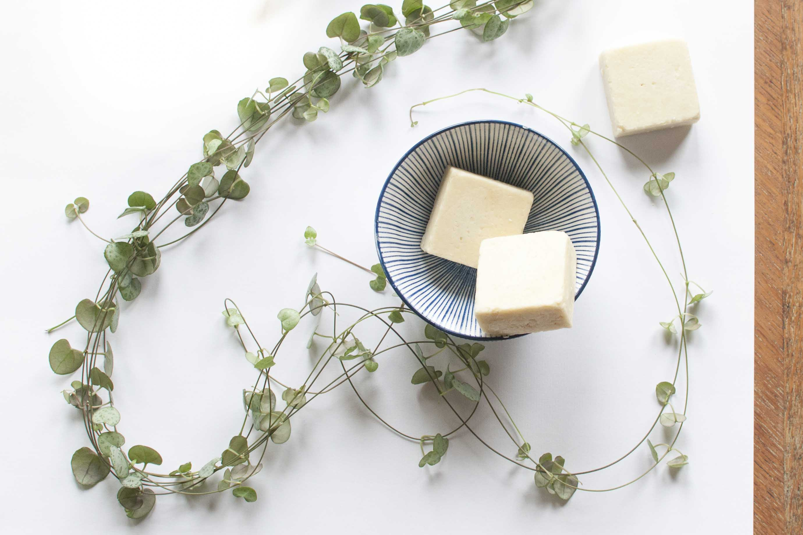 all about shampoo bar syndet
