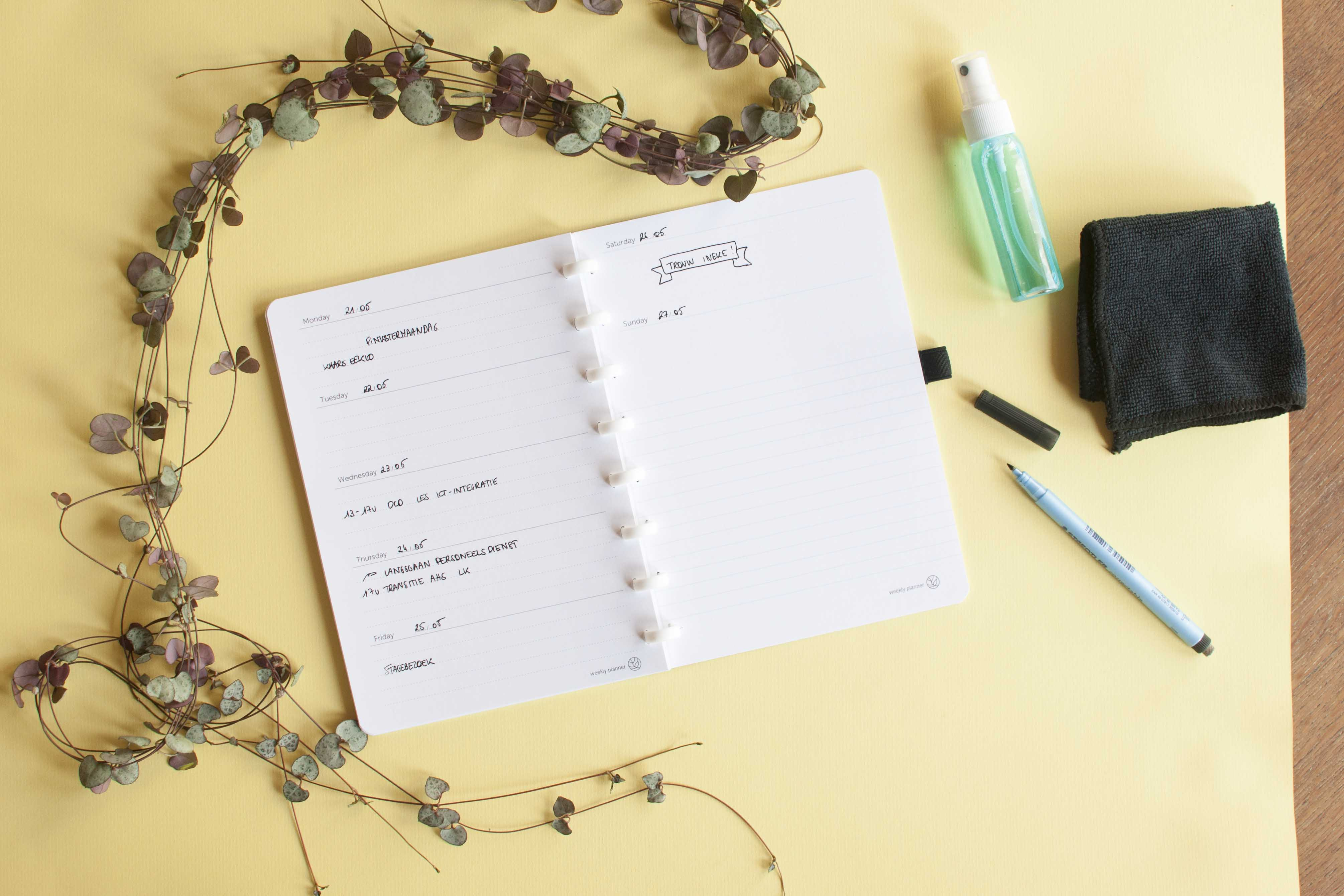 review green book our green story erasable notebook