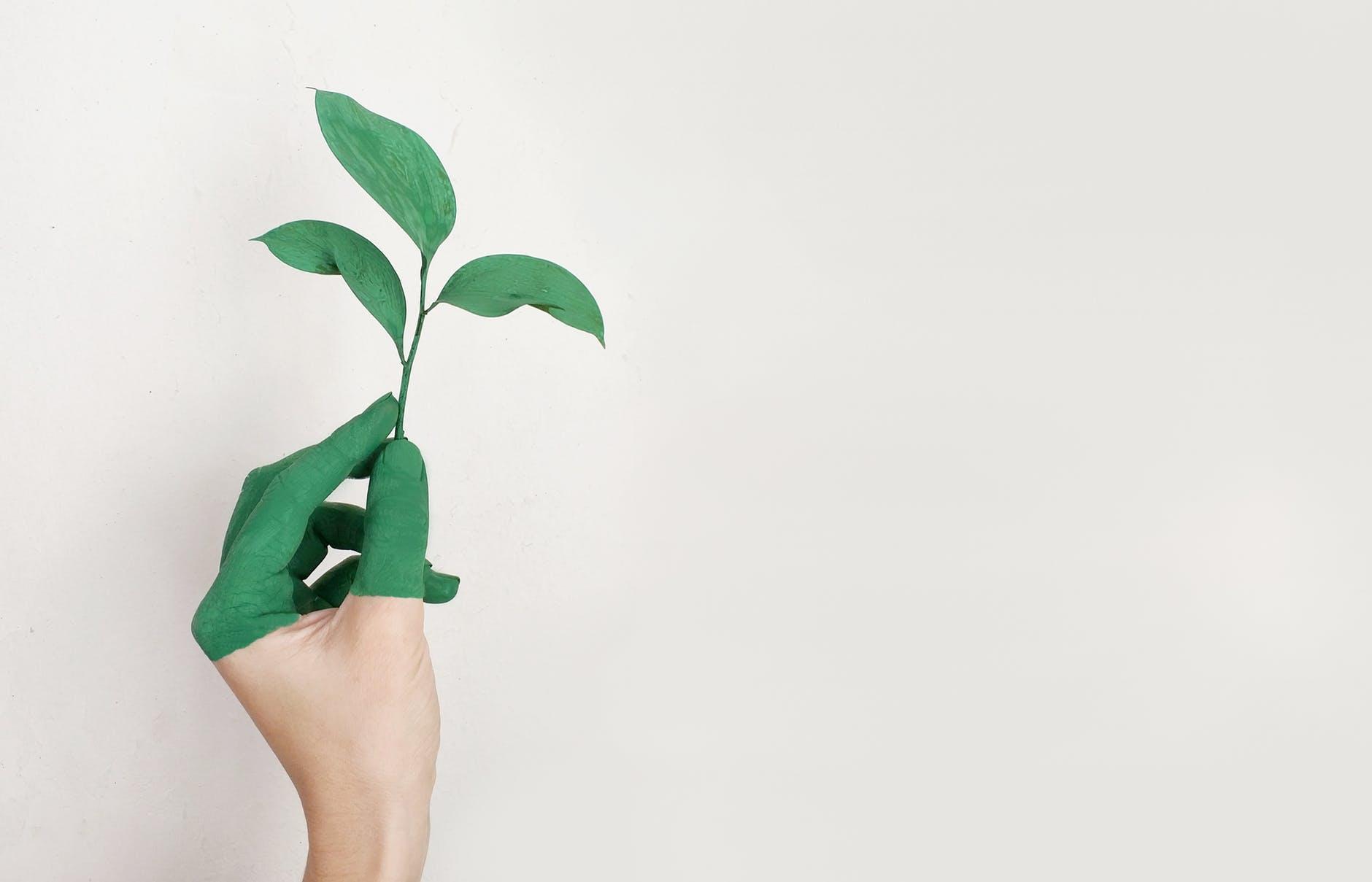 greenwashing unilever 2